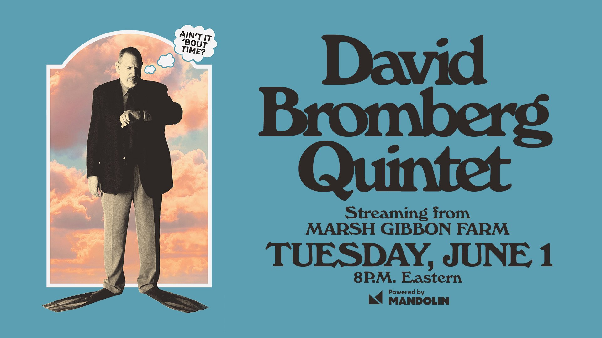 A Conversation with David Bromberg