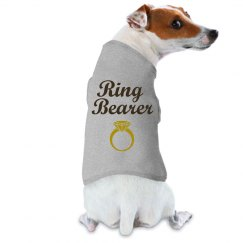 Ring Bearer Blue & Brown