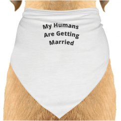My Humans are Getting Married