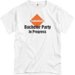 Party in Progress