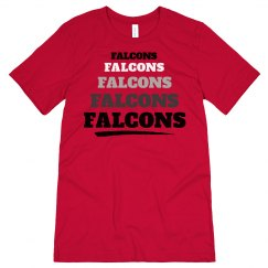 Falcons 1