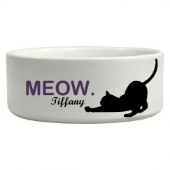 Cat Pet Bowl