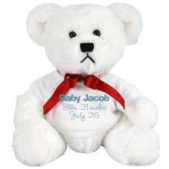 Baby Jacob Bear