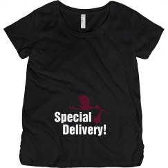 Special Delivery Stork