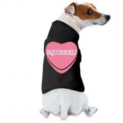 I Love--SQUIRREL!