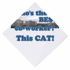 Co-Worker Cat