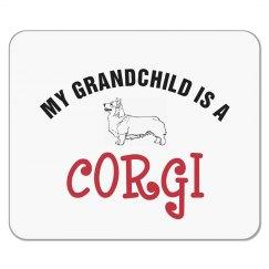 Corgi Grandchild