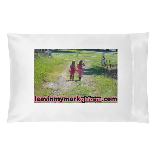 #18 LMM  best friends pillow case