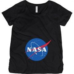 NASA Fan Graphic Logo