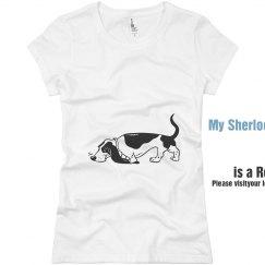 Visit an Animal Shelter
