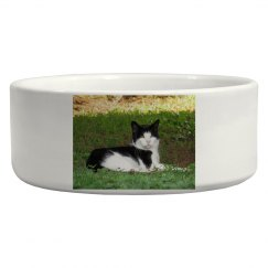 Cat Photo Pet Bowl