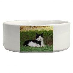 Cat Photo Pet Bowl