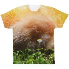 Cat Daydreams