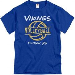 Vikings VB