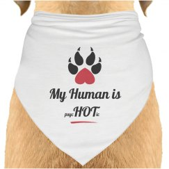 Dog Scarf Human Hot