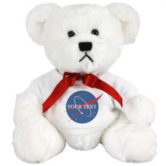 Custom Plush NASA Logo