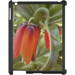 Black iPad Snap-on Case