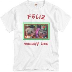 Feliz Naughty Dog 4