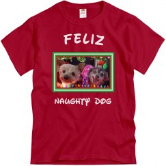Feliz Naughty Dog 5