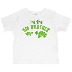 Big Brother Turtles