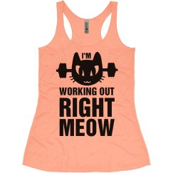 I'm Working Out Right Meow