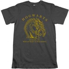 Hogwarts School