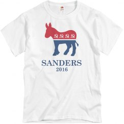Sanders 2016 Socialist
