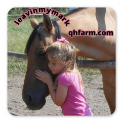 lmm#36  love my horse magnet