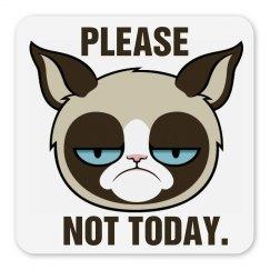 Grumpy Cat Magnet