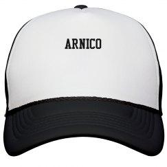 Arnico Trucker Hats in Assorted Colors