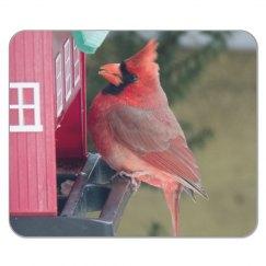 Cardinal Mouse Pad