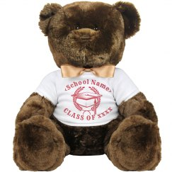 Personalized Class Of 2017 Bear