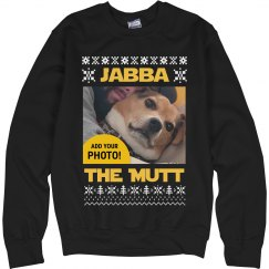 Jabba The Mutt Upload Your Dog