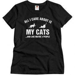 Care about my cats
