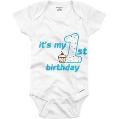 Boys 1st Birthday