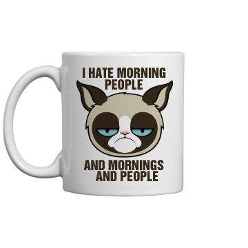 A Grumpy Cat's Morning
