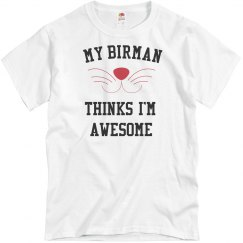 My birman loves me