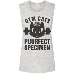 The Perfect Gym Cat