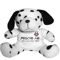 Rescue Dog Dalmation.