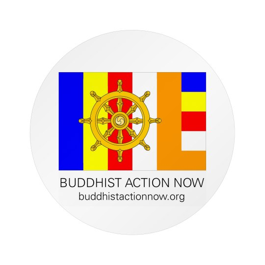 Buddhist Action Now Pin