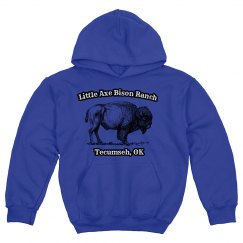 Youth bison hoodie