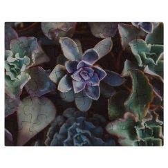 Cute Succulents Puzzle