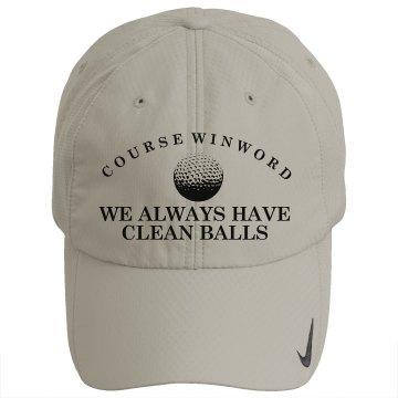 Cleanest Balls Golf Pros