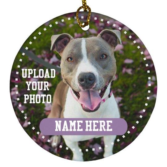 Custom Dog Photo Design