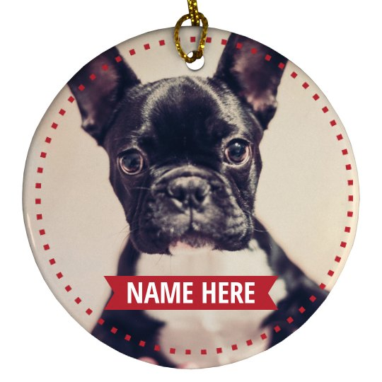 Custom Holiday Pet Photo Design