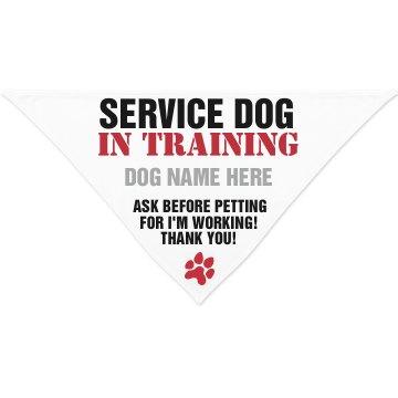 Custom Service Dog Bandana