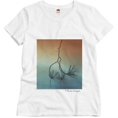 Branches sunset (t-shirt)