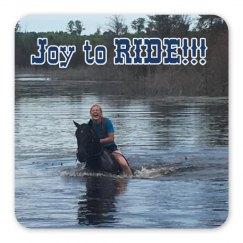 lmm #176 joy to ride