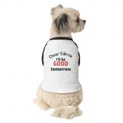 Dog Santa shirt