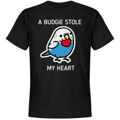 A Budgie Stole My Heart